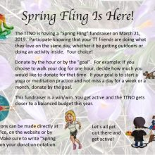 2019 TTNO Spring Fling